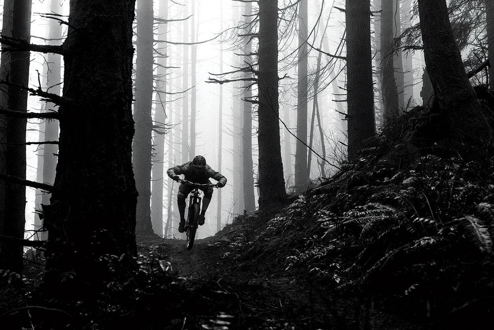 Tucking through Northwest woods. Eric Mickelson photo.