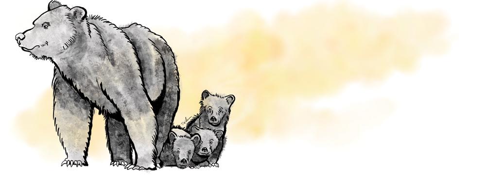 Illustration by Doug De Visser.