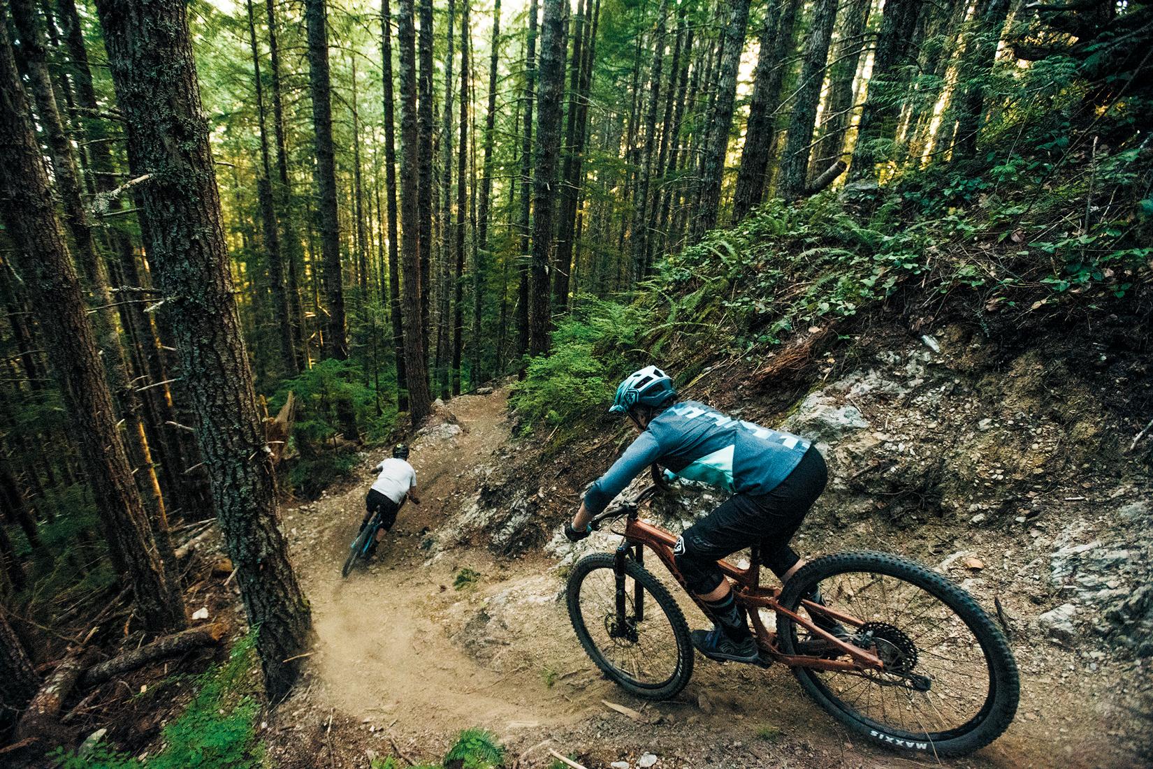 картинки велосипедиста в лесу сердца
